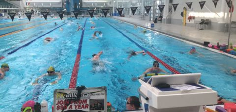 MSAC-Indoor-Swim